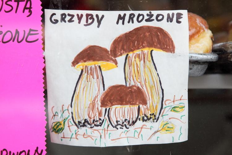 Grzyby mrożone  frozen mushrooms  hand-drawn sign  Star Deli & Bakery  Greenpoint  Brooklyn