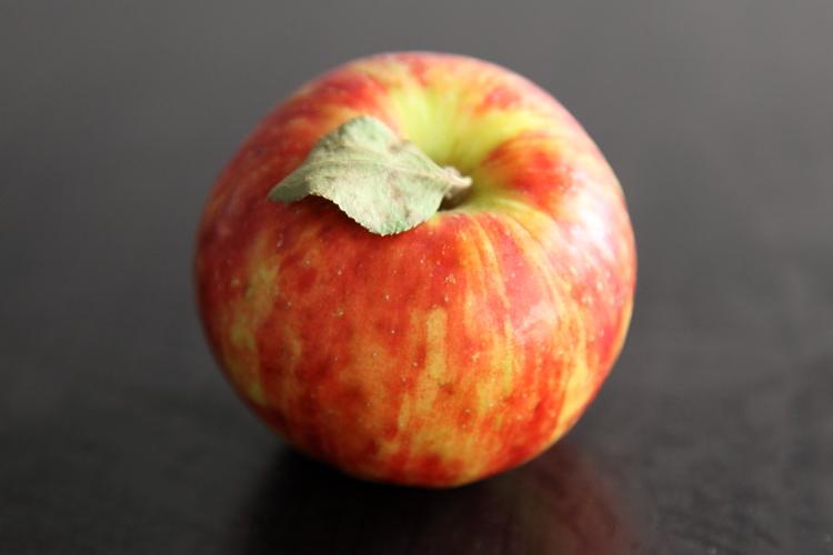 Esopus Spitzenburg  Samascott Orchards  Columbia Greenmarket  Broadway  Manhattan