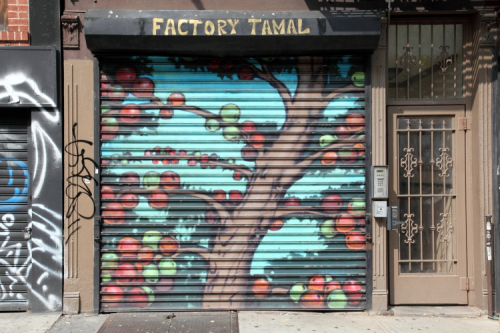 Jocote tree  perhaps  security-shutters mural  former location of Factory Tamal  Essex St  Manhattan
