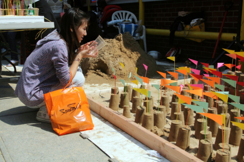 Congregant and sand stupas at the Songkran festival  Wat Buddhathai Thavorn Vanaram  Elmhurst  Queens