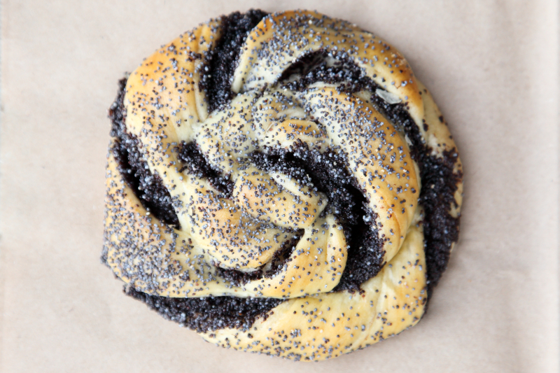 Poppy-seed pastry  Schreiber's Homestyle Bakery  Midwood  Brooklyn