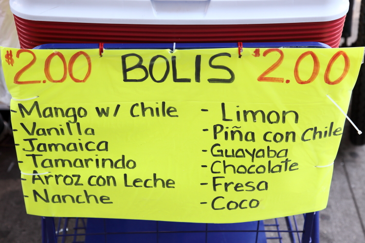 Bolis  street vendor's handwritten sign  Sunset Park  Brooklyn