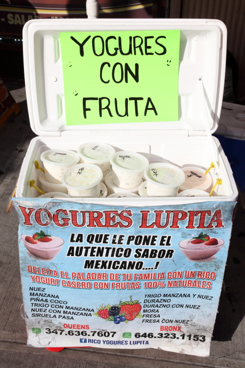 Street vendor's cooler  Yogures Lupita  Mott Haven  Bronx