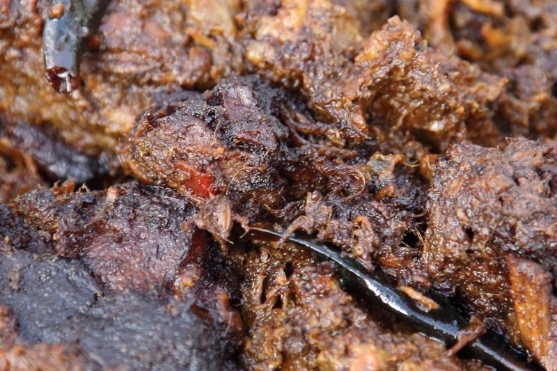 Beef kalavuna  Madhuban Sweets & Restaurant  Kensington  Brooklyn