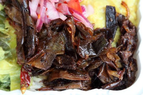 Vegetable sampler over rice (detail of onions)  New Asha Restaurant  Tompkinsville  Staten Island