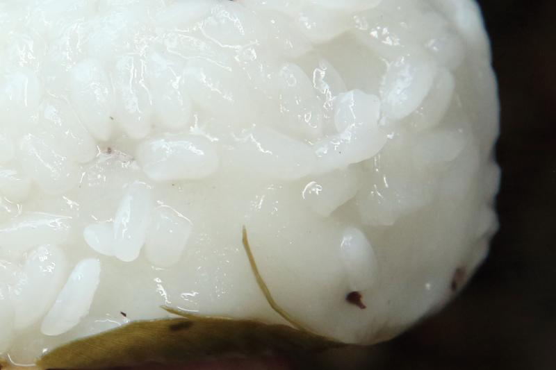 Street vendor's glutinous rice and black bean dumpling (detail of skin)  Flushing  Queens