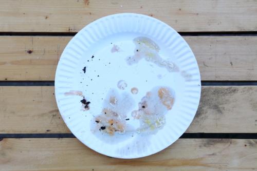 Leavings of burrata slice  L'Industrie Pizzeria  Williamsburg  Brooklyn