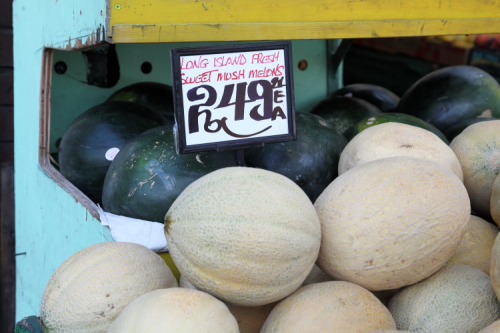 Long Island fresh sweet mush melons  Elliniki Agora Fruit & Vegetables  Astoria  Queens